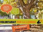 Apunta't a la 29a edició del Voluntariat per la llengua!